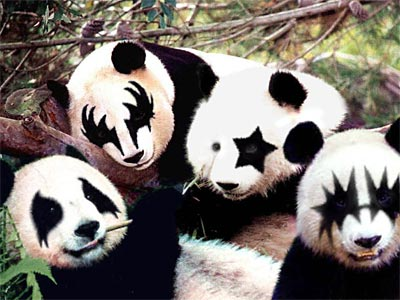 http://caswell.blogspot.com/china/images/20040907.Panda.jpg