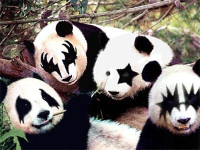 20040907.Panda.jpg